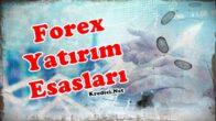 Forex ile Yatırımın Esasları Nelerdir?